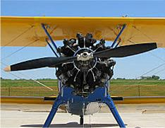 Stearman Front Close